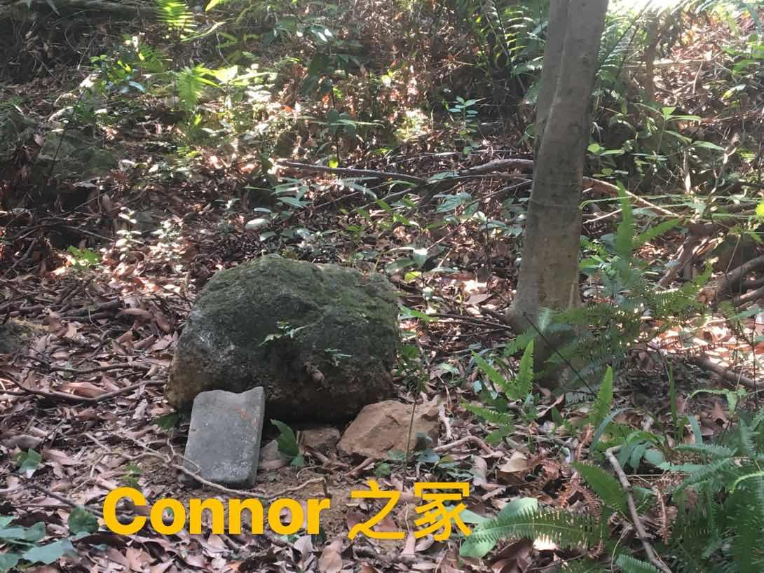 Connor下葬墓地